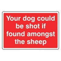 Your dog could be shot if found amongst the sheep